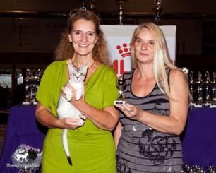 Abessijn Cattery Erendil - Abessijn Thor op show in Wassenaar